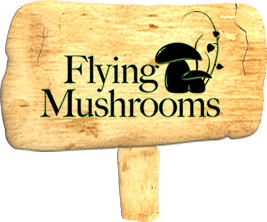 FlyingMushrooms